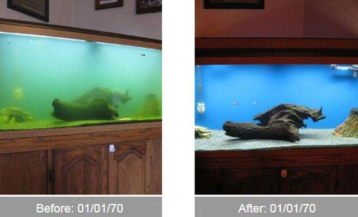 Transformações - Antes e depois 29