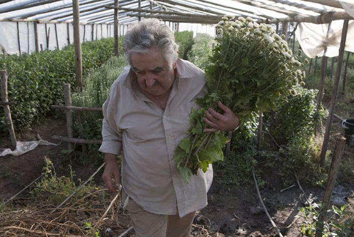 Jos� Mujica, o presidente mais humilde e generoso do mundo 11