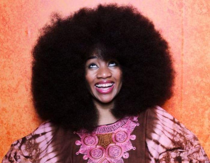 Conheça Aevin Dugas, a orgulhosa dona do maior penteado afro do mundo 10