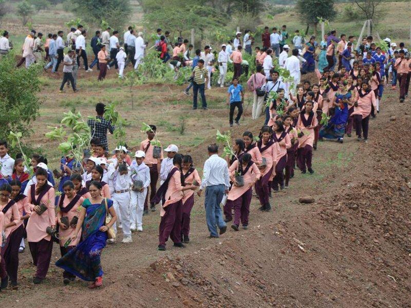 Índia estabelece um novo recorde Guinness de reflorestamento: planta 66 milhões de árvores em 12 horas 01