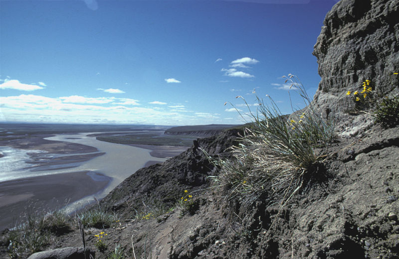 A história do fotógrafo perdido no Alasca que esqueceu de comprar a passagem de volta