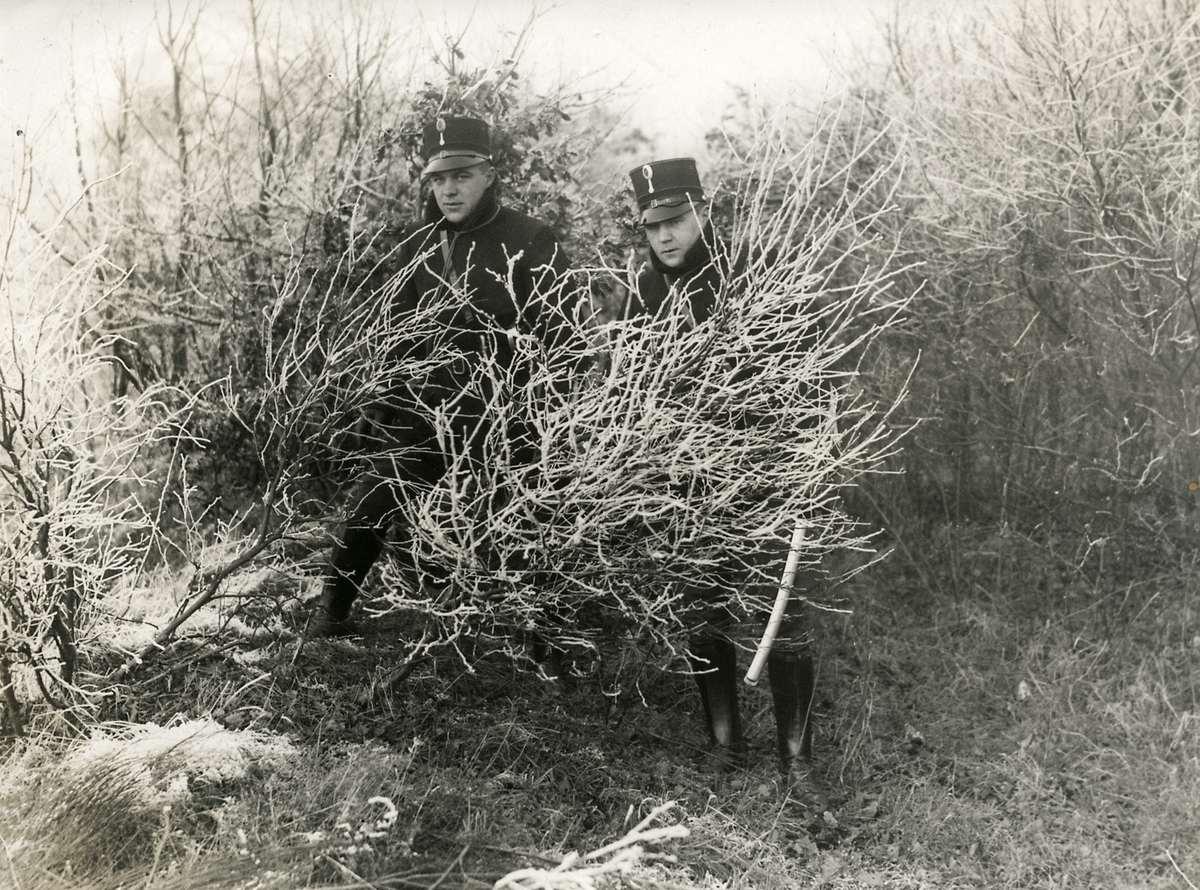 A vida dos ciganos na Europa antes da Segunda Guerra Mundial 17