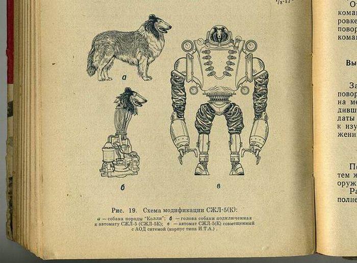Collie, o ciborgue russo com cabeça de cão 03