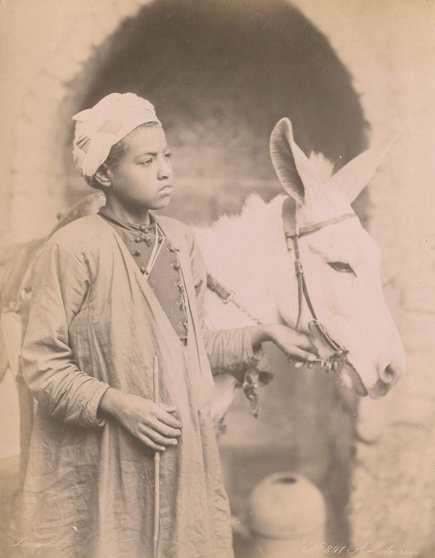Magníficas imagens capturam as maravilhas antigas e modernas do século XIX no Egito 06