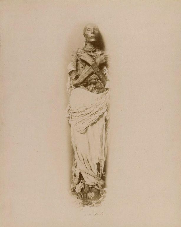 Magníficas imagens capturam as maravilhas antigas e modernas do século XIX no Egito 09