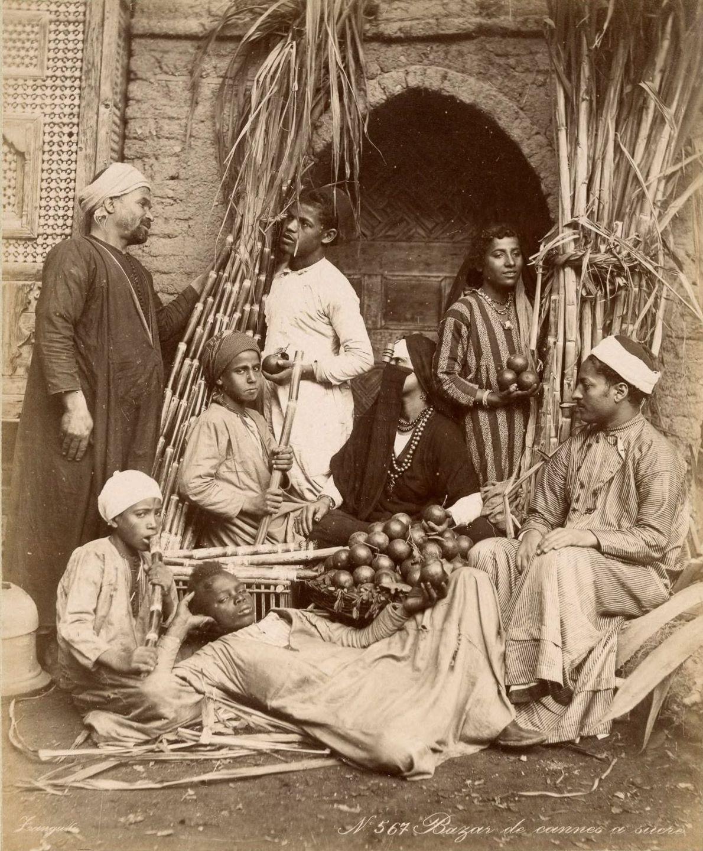 Magníficas imagens capturam as maravilhas antigas e modernas do século XIX no Egito 15