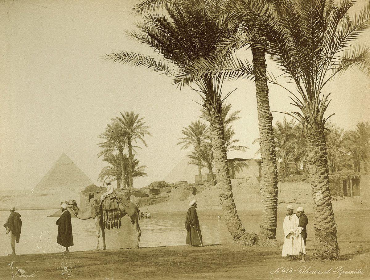 Magníficas imagens capturam as maravilhas antigas e modernas do século XIX no Egito 23