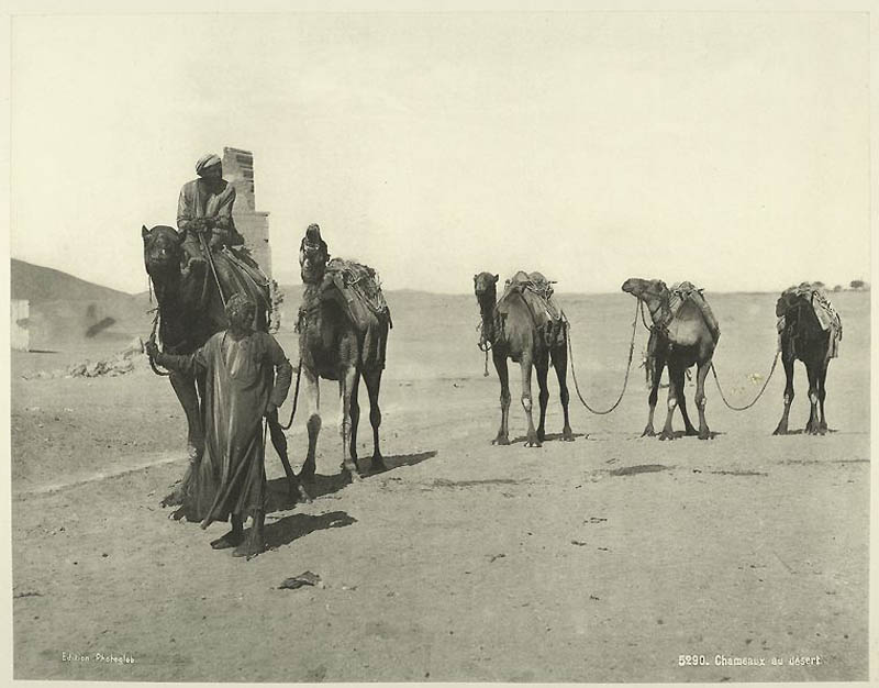 Incríveis fotos do Egito de 1870 15