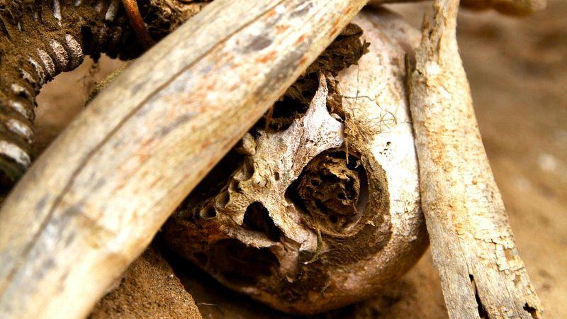 As m�mias defumadas de Aseki, em Papua Nova Guin� 05