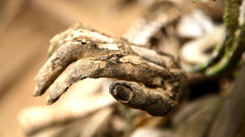 As múmias defumadas de Aseki, em Papua Nova Guiné 06