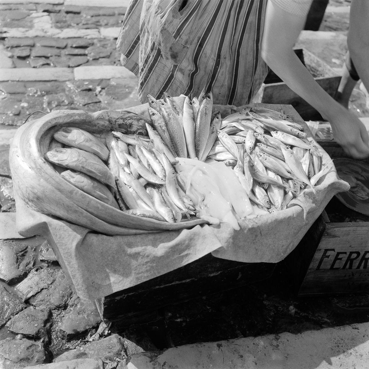 Fotografias deslumbrantes capturam a cultura da pesca dos anos 50 em Portugal 06