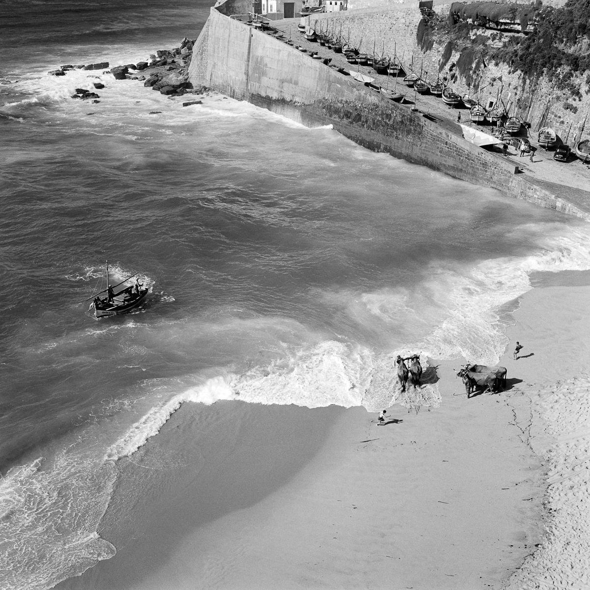Fotografias deslumbrantes capturam a cultura da pesca dos anos 50 em Portugal 21