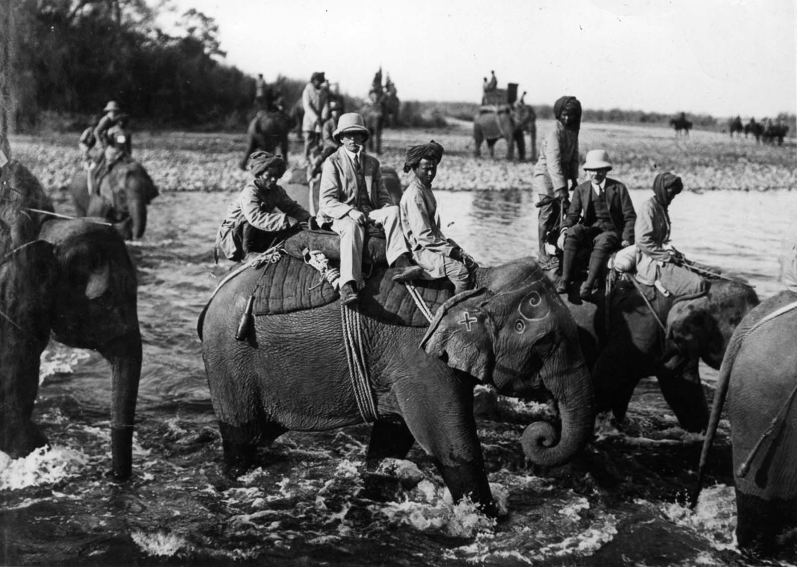 Em 1911 a realeza britânica foi à Índia para ser coroada e aproveitou para caçar 16