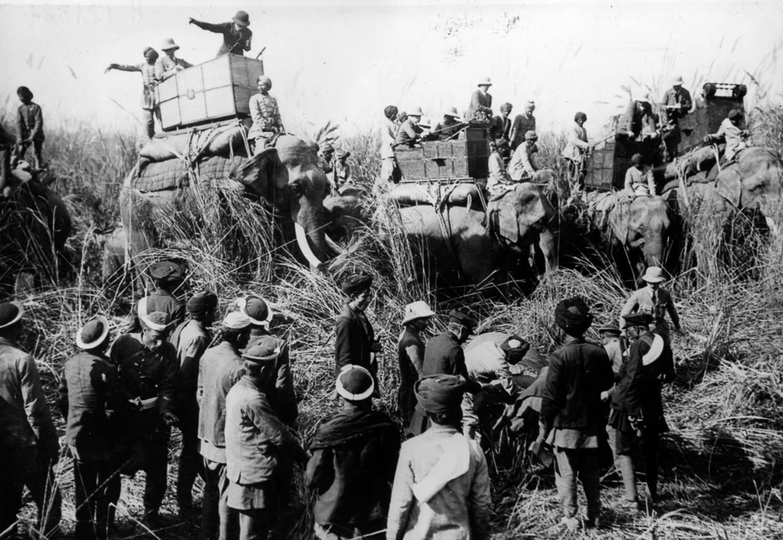 Em 1911 a realeza britânica foi à Índia para ser coroada e aproveitou para caçar 17