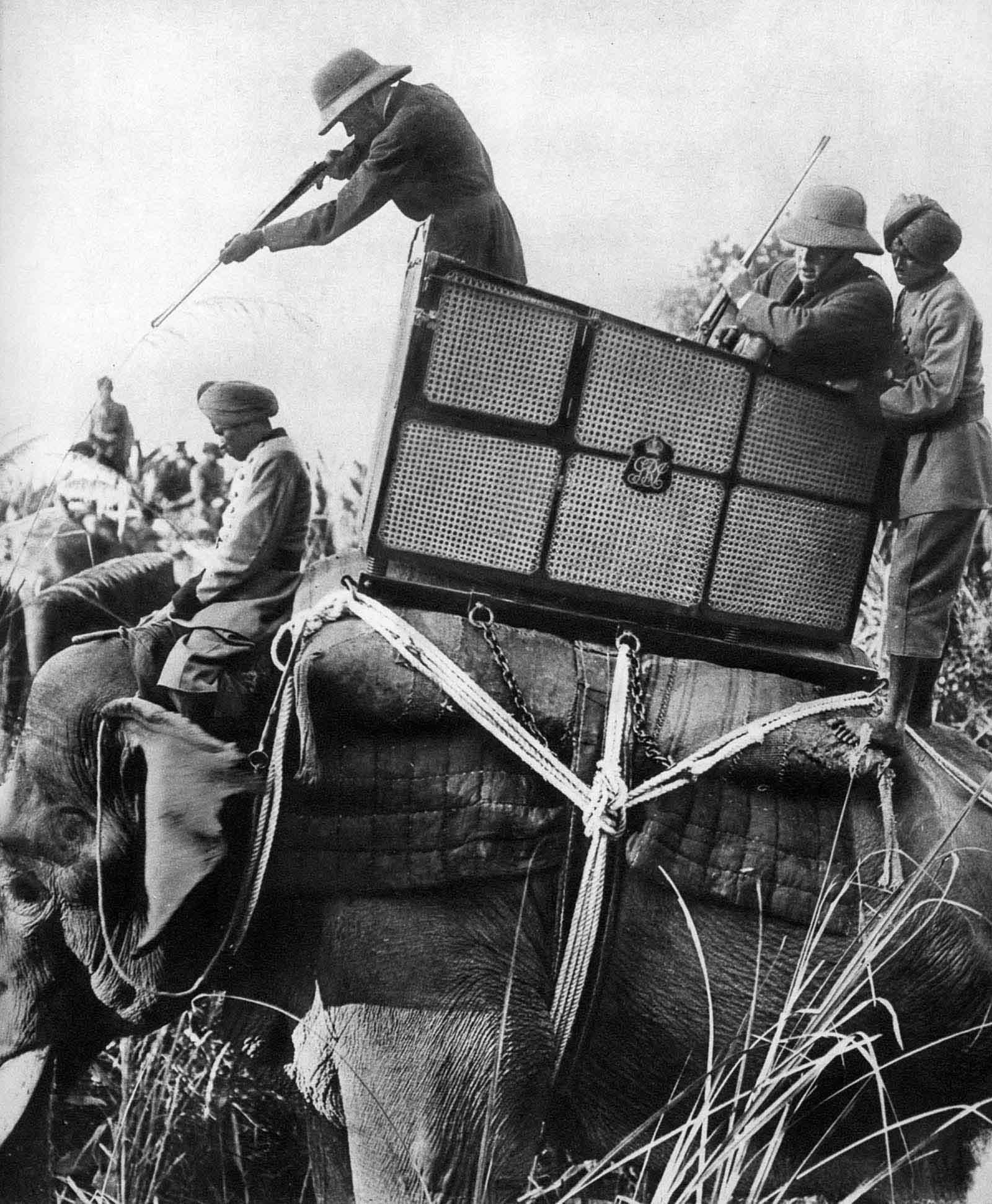 Em 1911 a realeza britânica foi à Índia para ser coroada e aproveitou para caçar 18