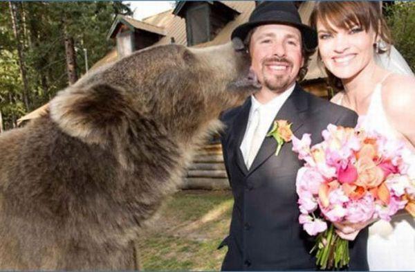 Os casamentos mais estranhos e criativos 40