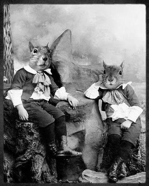 Fotos antigas estranhas e engraçadas 3 39