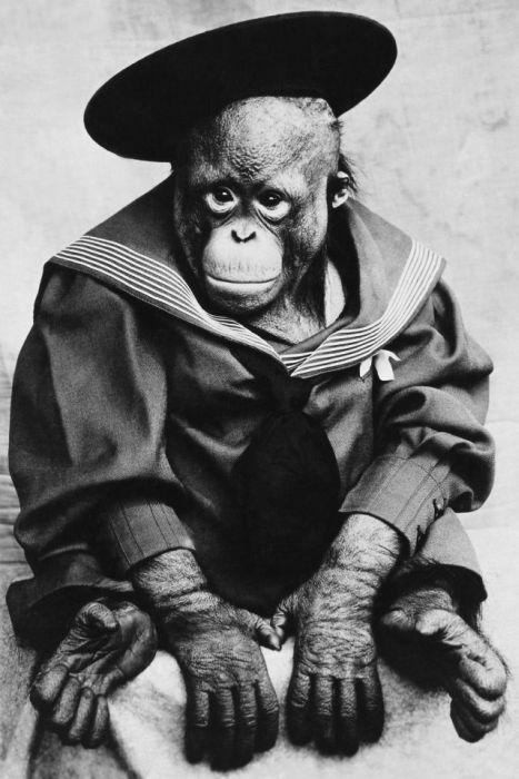 Fotos antigas estranhas e engraçadas 24