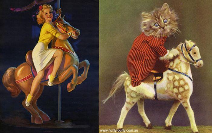 Gatos que parecem com pin-ups 16