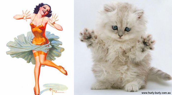 Gatos que parecem com pin-ups 23