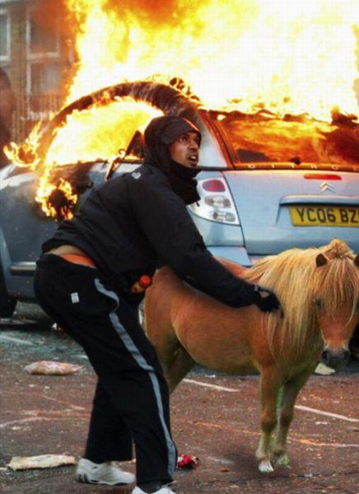 Imagens fotochopadas dos saqueadores de Londres 08
