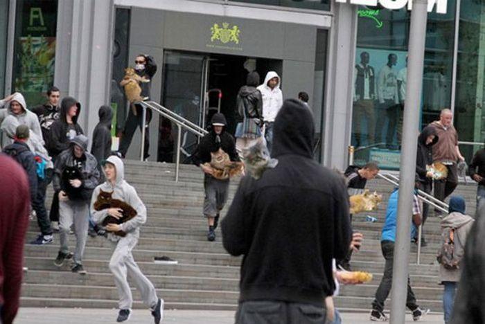 Imagens fotochopadas dos saqueadores de Londres 44