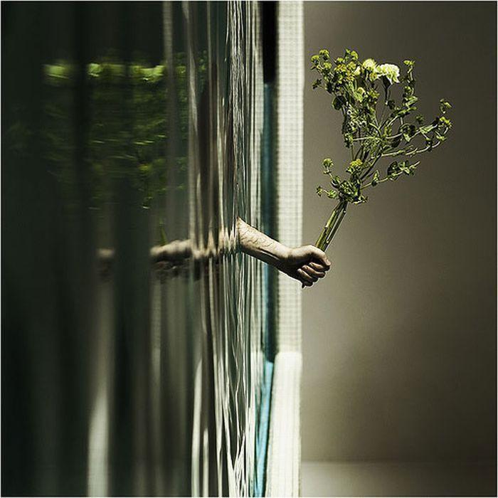 Incríveis fotografias de perspectiva forçada 2 50