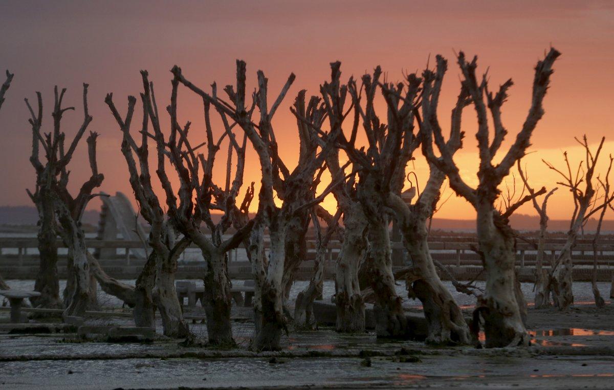Uma cidade fantasma emerge das águas de uma enchente que aconteceu há 30 anos, na Argentina 04