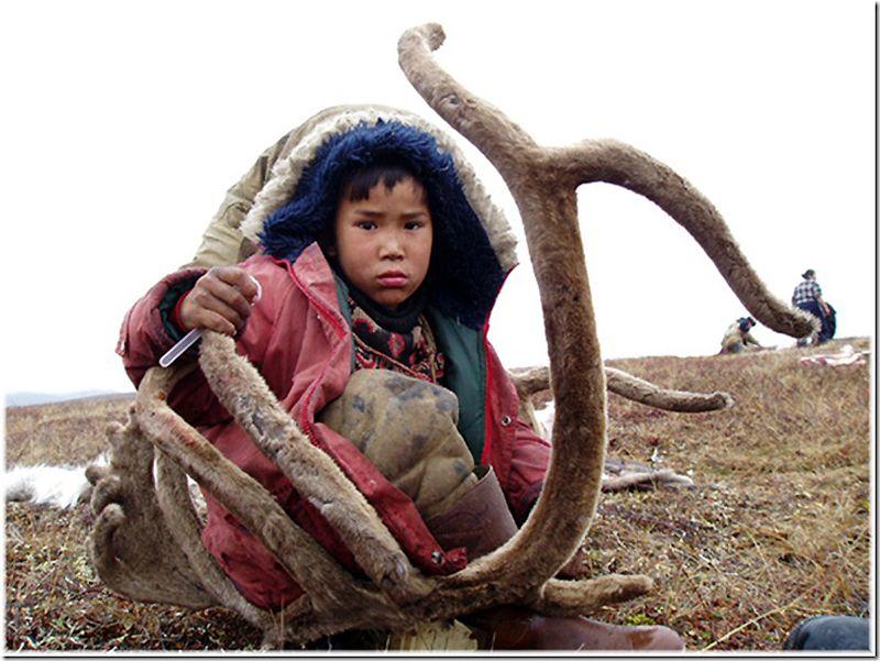 Um passeio por Chukotka 11
