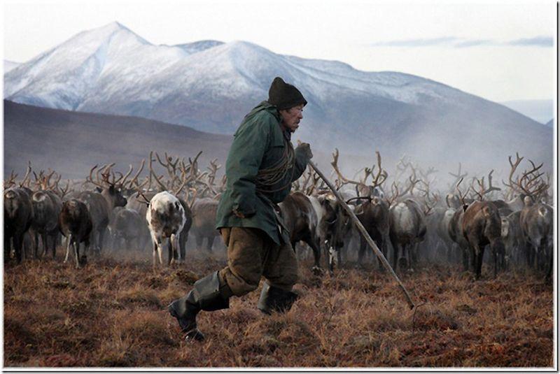 Um passeio por Chukotka 13