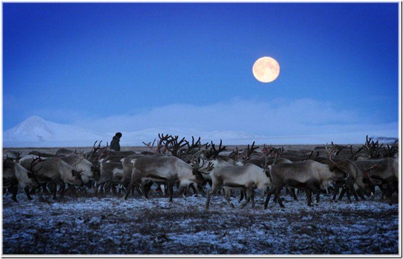 Um passeio por Chukotka 22