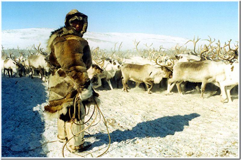 Um passeio por Chukotka 42
