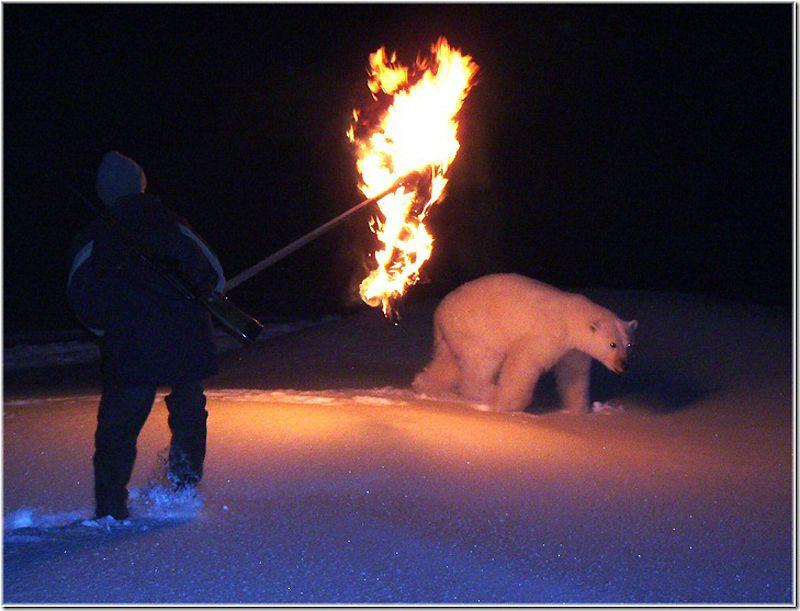 Um passeio por Chukotka 48