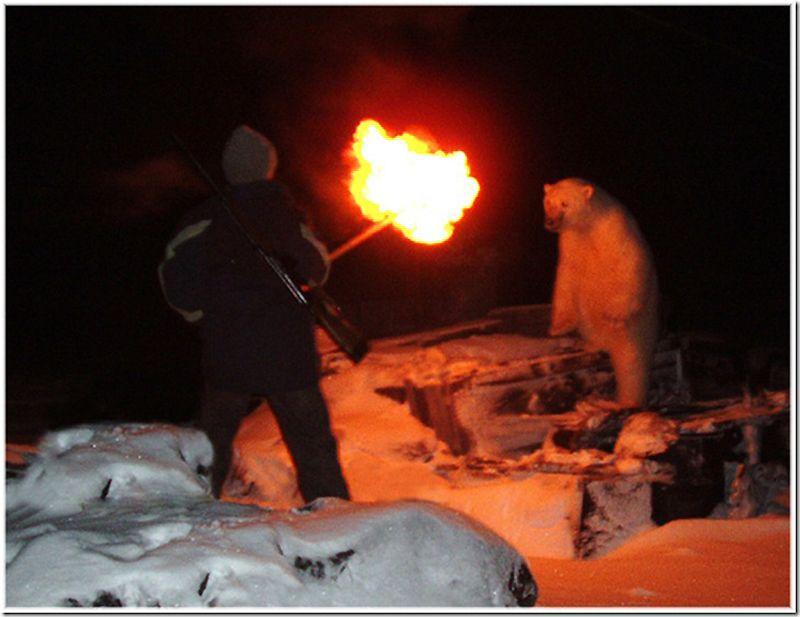 Um passeio por Chukotka 49