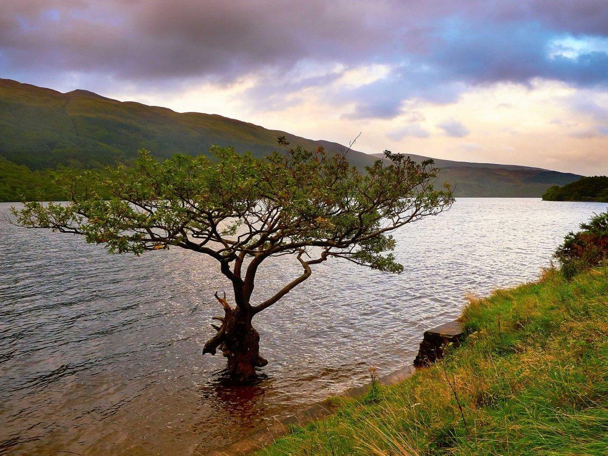 23 fotos que vão fazer você querer visitar a Escócia 21