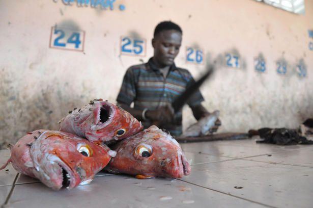 Pescadores somalis 12