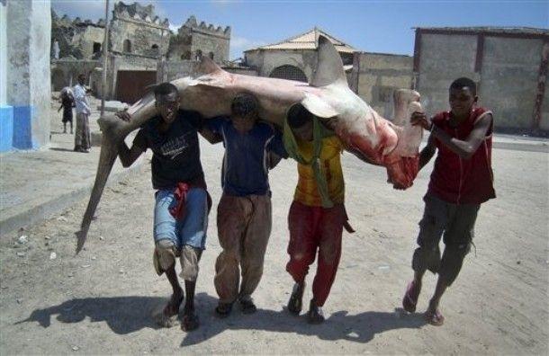 Pescadores somalis 14