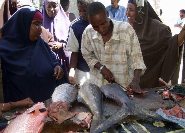 Pescadores somalis 24