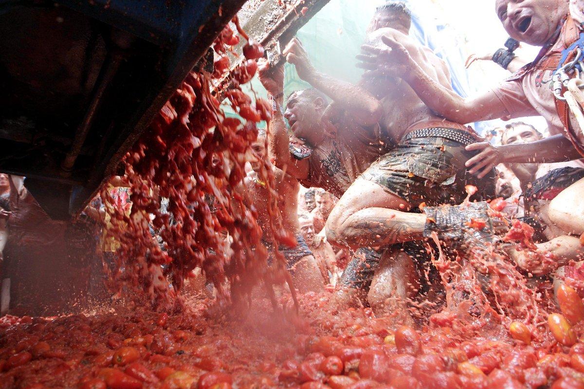 Banhados em tomate: as melhores fotos da Tomatina 2016 09