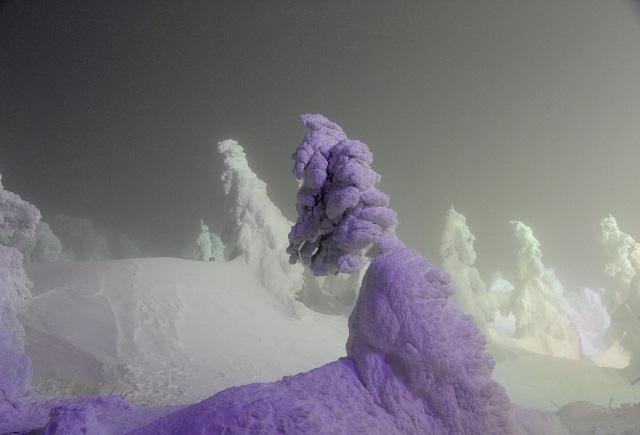Juhyou, os belos monstros de neve japoneses 02