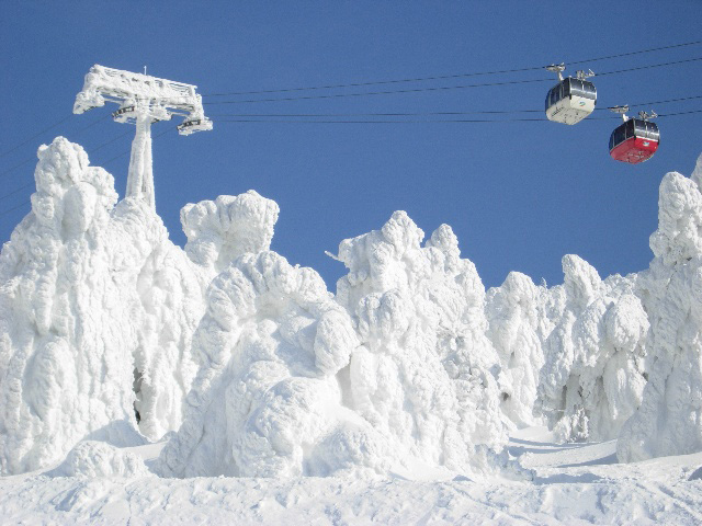 Juhyou, os belos monstros de neve japoneses 07