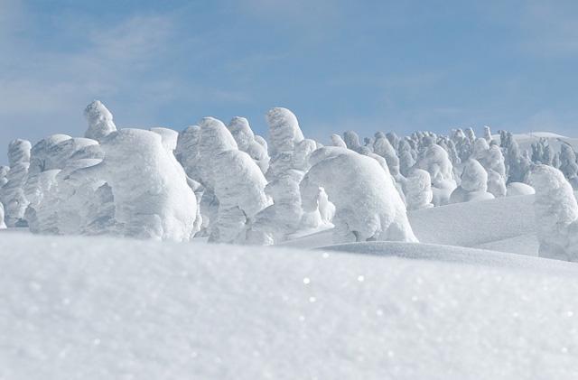 Juhyou, os belos monstros de neve japoneses 13