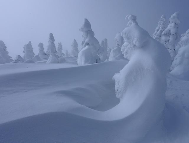 Juhyou, os belos monstros de neve japoneses 15