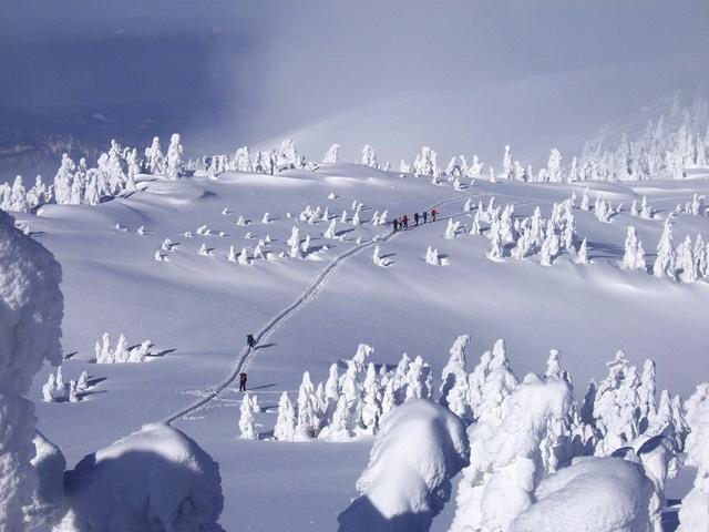 Juhyou, os belos monstros de neve japoneses 18