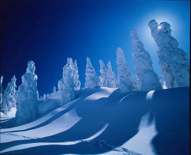 Juhyou, os belos monstros de neve japoneses 19