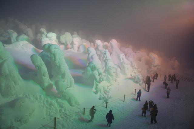 Juhyou, os belos monstros de neve japoneses 21