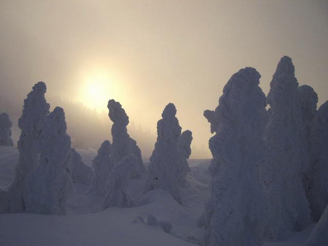 Juhyou, os belos monstros de neve japoneses 22