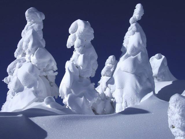 Juhyou, os belos monstros de neve japoneses 23