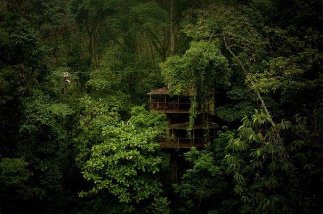Incrível comunidade de casas nas árvores  01