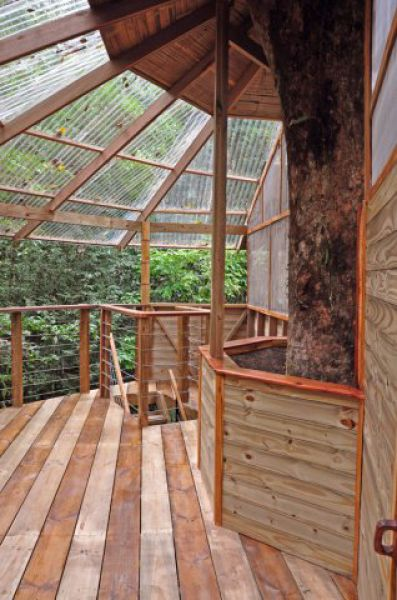 Incrível comunidade de casas nas árvores  05